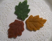 Custom Marzipan Leaves for Vivi