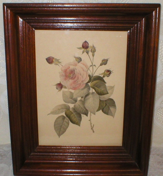 Vintage Rose Print In Beautiful Mahogany Frame Victorian Shabby Chic Country Cottage Paris French Roses