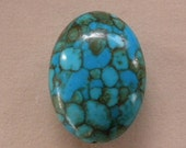 Picaso Turquoise Reconstituted