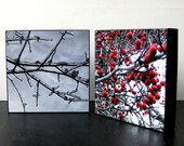 Berries and Ice - Set of Two Photo Blocks