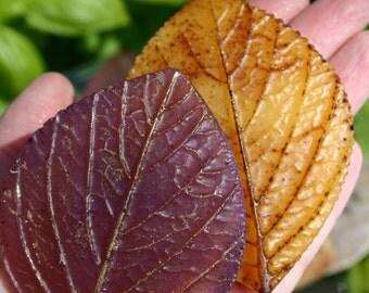 Autumn Leaf soap - Thanksgiving - hostess gift - Autumn Fall