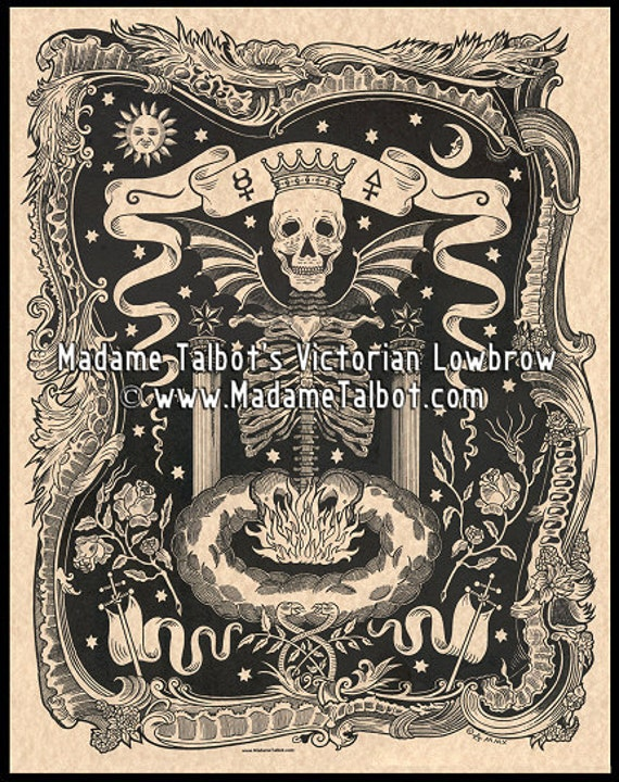 Skull Alchemy Ribcage Skeleton Skull Gothic Lowbrow Occult Poster