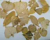 22 Genuine Gold Dipped Leaves charms pendants