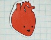 happy anatomy magnets