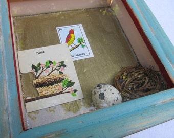 NEST  --original mixed media shadowbox wall hanging--  real quail egg shell--