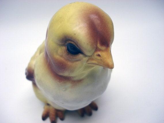 Disgruntled chicken