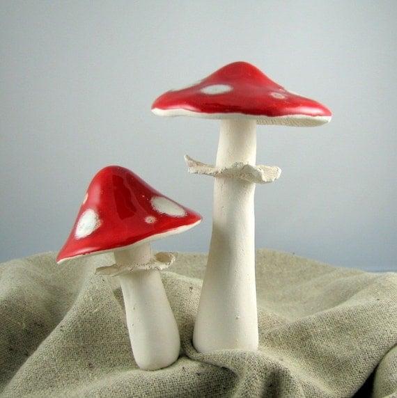 Amanita Muscaria garden mushrooms