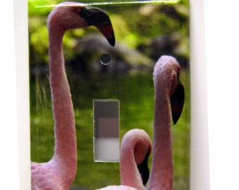 Pink Flamingos -- Recycled Single Light Switch Plate Cover, Birds, Nature, Hawaii, Florida, Green, Photography