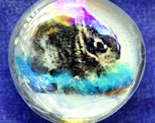 Baby Bunny Wears a Bracelet Bauble iridescent glass pebble magnet