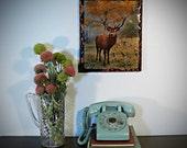 ironic kitsch . . . deer clock plaque . . . buck shot