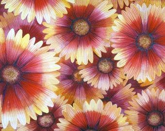 Blanket Flower I original watercolor painting