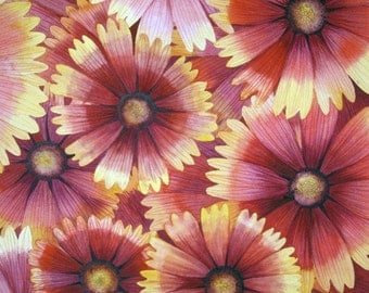 Blanketflower IV original watercolor painting