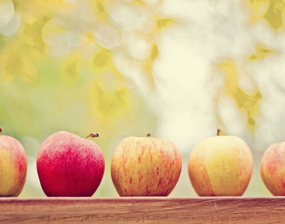 Teacher Apple Gift - 11x14 Fine Art Food Photography Print - yellow, red, brown Fall and Autumn fruit home and kitchen decor photo