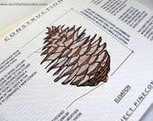 Project Pinecone - Blank Architecture Construction Card - ArchitetteStudios
