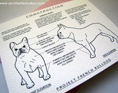Project French Bulldog (White) - Blank Architecture Construction Card - ArchitetteStudios