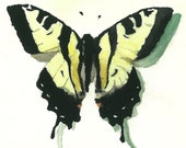Yellow Butterfly - Print of Original Watercolor Painting CUSTOM SIZE