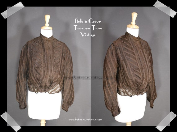 Edwardian Bodice Shirtwaist Chocolate Brown Pouter Pigeon For Study