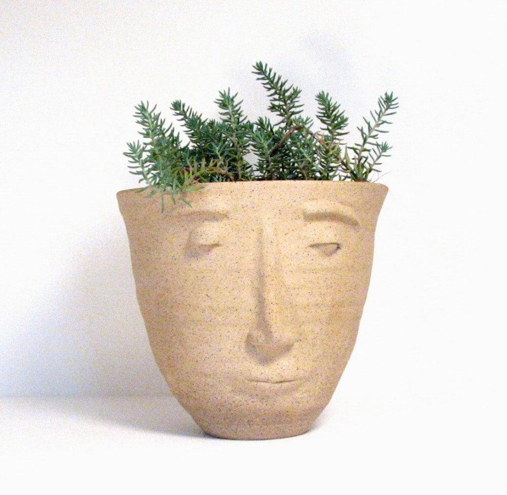 Face Flower Pot