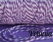 Baker's Twine - Petunia purple