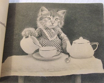 Four Little Kittens Dressed up and Photographed