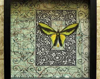 RECYCLED MAPART. Tropical Green Butterfly on 1923 Oklahoma Map in Shadow Box Frame