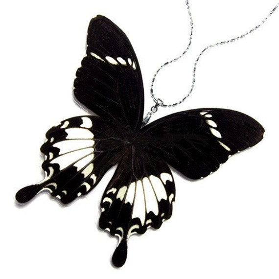 BUY 2 GET 1 FREE REAL BUTTERFLY WING Necklace / Pendant