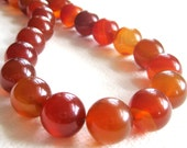 Red Maple Carnelian Necklace - Chunky Beaded