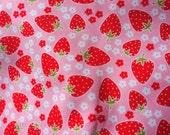 Strawberry print nc11