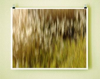 WINDY GRASS - 8x10 Signed Fine Art Photograph
