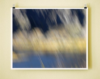 RIVER BRUSH - 8x10 Signed Fine Art Photograph