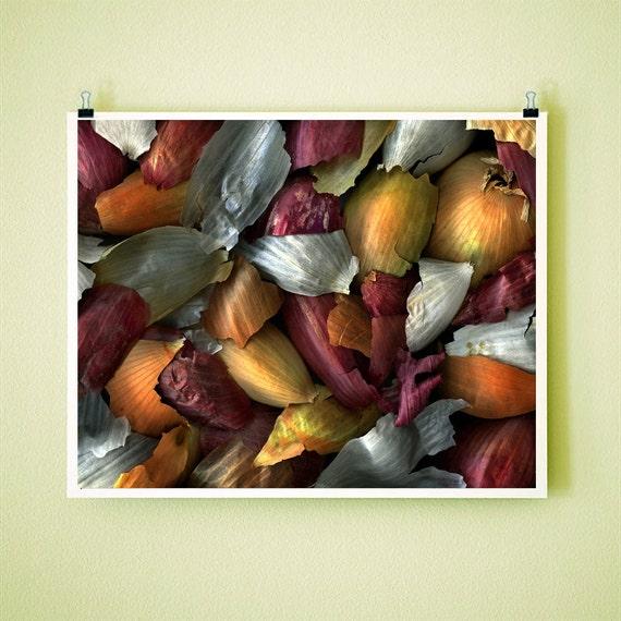 MIXED ONION SKINS - 8x10 Signed Fine Art Photograph