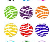Multi Color Zebra 1 inch Circle Image Graphic Design for Bottlecaps, Disc-Its, Glam-itz or Scrapbooking