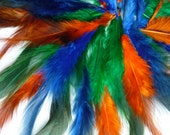 LOOSE SADDLE FEATHERS,   Perfect for Beginners /27