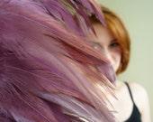 COQUE  SADDLE /  Maroon, Antique Rose Pink / 117