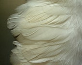 GOOSE  NAGOIRE FRINGE, Off white, Cream / 440-2