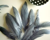 VOGUE GOOSE NAGOIRE Loose Feathers , Dark Silver Blue Grey / 2616