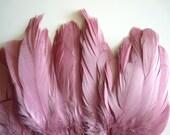 VOGUE GOOSE Feather Fringe, Exclusive  Quality, Mauve, Antique Rose Pink / 814