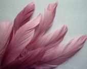 VOGUE GOOSE NAGOIRE Loose Feathers,  Mauve Antique Rose / 274