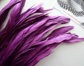 COQUE TAIL FEATHERS Loose, Magenta, Purple / 165