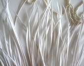 GOOSE BIOT FEATHERS,  Off White, Eggshell / 718