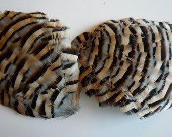 FEATHER PAD Partridge Feather Pad Exclusive Quality / 112