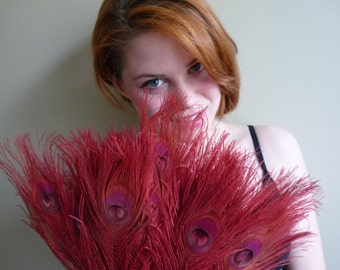 BLEACHED PEACOCK FEATHERS 4 pieces ,  Iridescent Color, Rust Brick Red / 523
