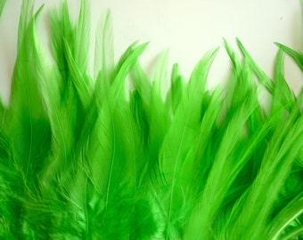 BELLA COQUE SADDLE  / Kiwi , Apple Green  / 141