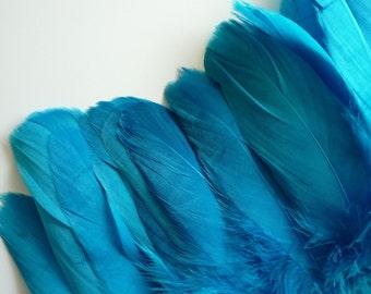GOOSE FEATHER FRINGE , Teal Blue / 458