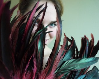 COQUE TAIL FEATHERS Loose / Swiss Chard, Iridescent Burgundy/ 201