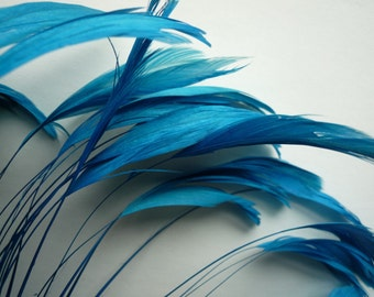 STRIPPED COQUE TAIL / Teal  Blue / 1138