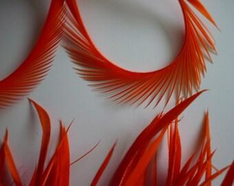 GOOSE BIOT Feathers, Carrot  Orange  /  721 / BOGO