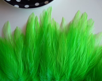 COQUE HACKLE, Shocking Fluorescent Lime Green   /  659