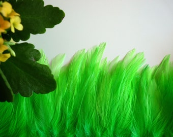 COQUE HACKLE, Shocking Fluorescent Lime Green   /  659 - 3