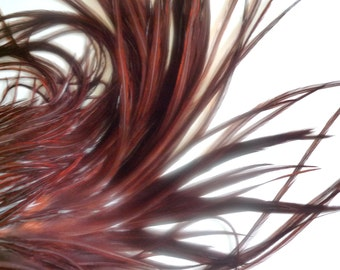 LONG ROOSTER Feathers / Hair Extension /  Thunder   -   Red Earthy tone / 710 - 2 / BOGO